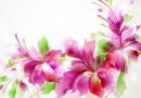 182425_kwiaty-grafika